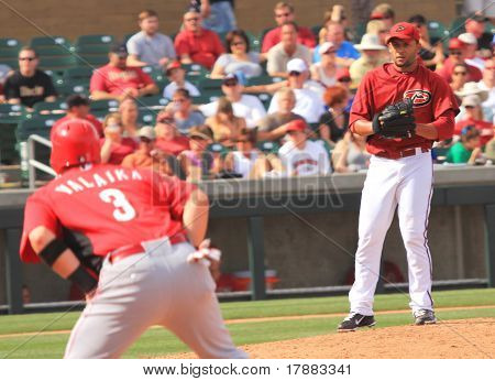 Arizona Diamondbacks Left Handed Pitcher Jordan Norberto