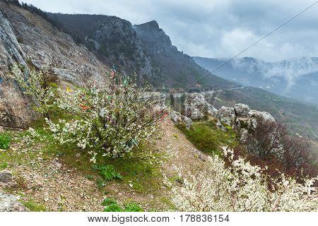 Crimea, Black Sea. Coastal Landscape