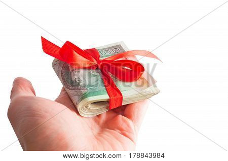 Polish Money As A Gift On Hand Isolated On White. Business, Technology, Internet Concept. Stock Phot