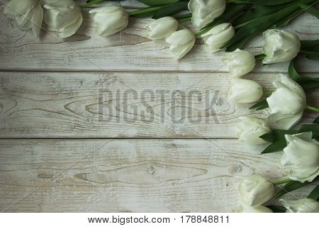 Beautiful white tulips on a wooden background