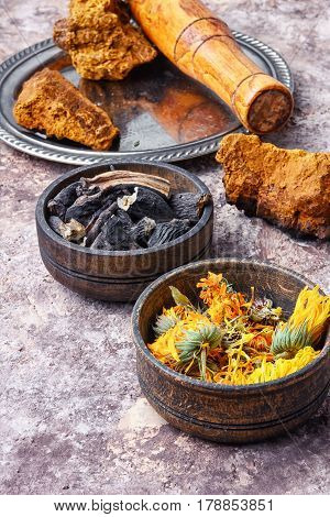 Healing Gathering Roots And Herb
