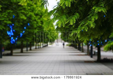 Landscape of a green sidewalk with depth