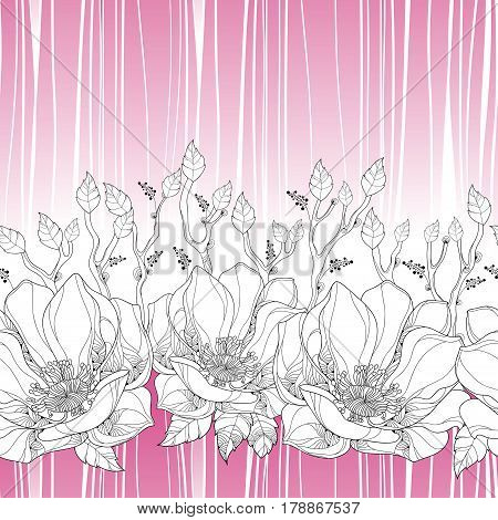 Vector seamless pattern with linear magnolia flower and ornate leaves on the white background with pink stripes. Elegance floral background in contour style for summer design.