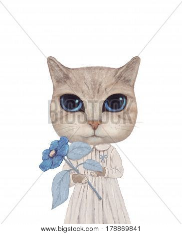 a cat with big eyes and a blue flower on hands