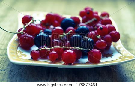 currant berries on a plate photo effect