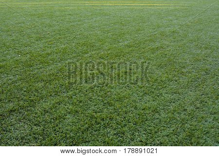 The artificial turf green grass on the football field, diagonal stripes