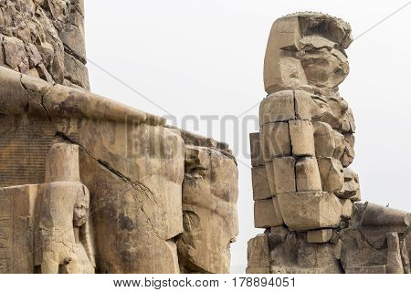 The colossi of Memnon Luxor  in Egypt.