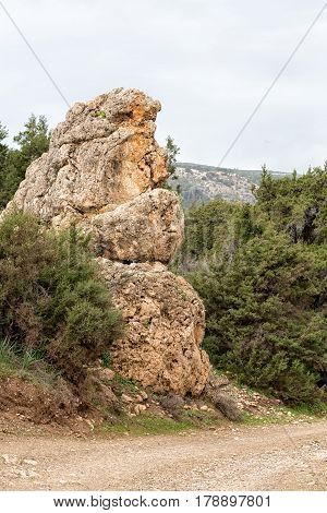 A funny rock that looks like the Japanese monster, Godzilla.