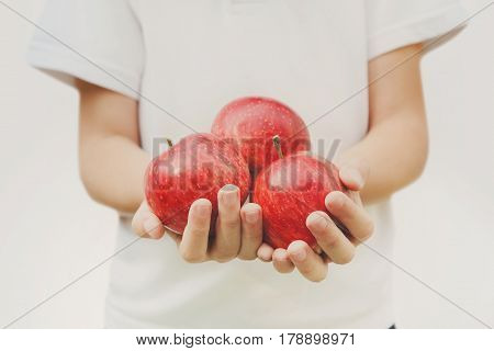 Healthy nutrition concept. Child with apples in hands isolated. Girl has handful of red apples, harvest background.