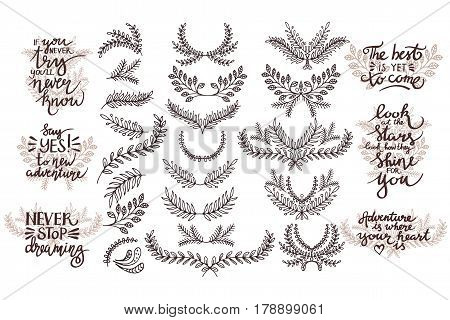 Set of hand drawn branches. Thematic phrases.
