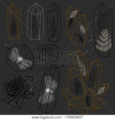 Set of hand drawn crystals and leafs moths rose inside gems. Transparent terrariums. Black and white and golden colors. Vector illustration.