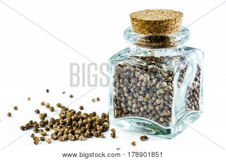 Dry cilantro in glass bottle and heap of cilantro isolated on white background. Closeup macro shot.