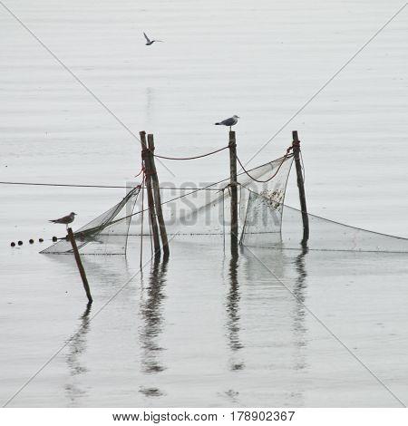 Pole Fishing Net