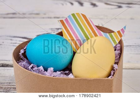 Painted Easter eggs in box. Colorful bird paper cutout.
