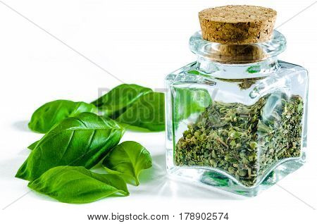 Dry crushed basil in glass bottle and whole fresh basil leaves isolated on white background. Closeup macro shot.