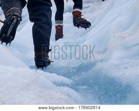 Group Of Tourists Trekking On A Glacier