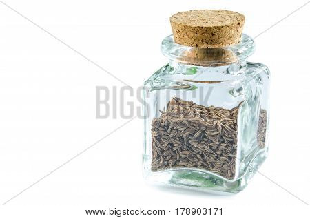 Dry caraway seeds in glass bottle isolated on white background. Closeup macro shot.