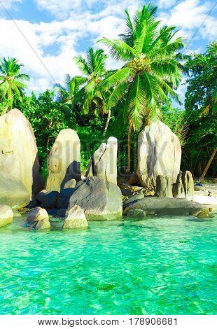 Beach Ocean Exotic