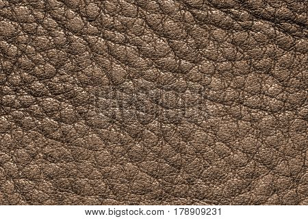 Brown leather texture, leather background for design with copy space for text or image.