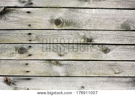 Natural Wooden Background Texture Of Undyed Fence With Rusty Nails