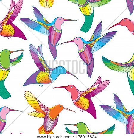 Vector seamless pattern with colorful flying Hummingbird or Colibri in contour style on the white background. Exotic tropical bird for summer design.
