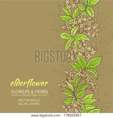 elderflower branches vector pattern on color background
