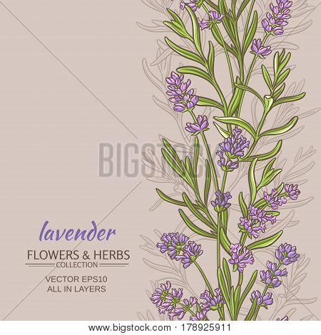 lavender flowers vector pattern on color background