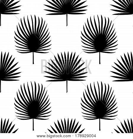 Seamless pattern of fan palm leaves silhouette isolated on white background. Tropical wallpaper, textile print