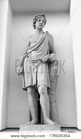 Statue of Adonis in St. Petersburg Russia. Black and white. Adonis is the young resurrecting god of spring the personification of the annual dying and revitalization of nature.