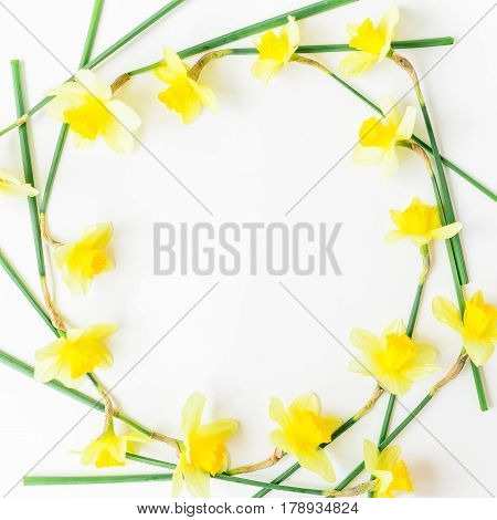 Floral background. Pattern of narcissus on white background. Flat lay, top view.