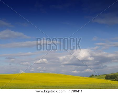 Rural English Landscape