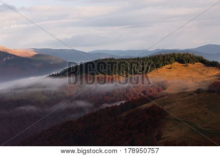 colorful foggy sunrise in autumn Carpathians landscape, location west ukraine,   Ukrainian Carpathian mountains, east Europe, wonderful world
