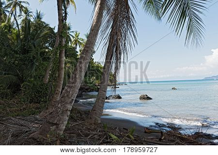 Beautiful beach at Drake Bay on the Pacific Ocean in Costa Rica 6