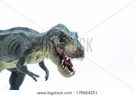 Head Close Of Green Dinosaur Tyrannosaurus Rex With Open Mouth In Attack Position - White Background
