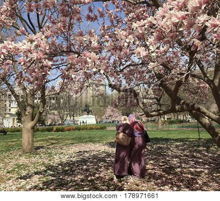WASHINGTON, DC (April 2016) - Two tourists enjoying the beautiful scenery at Lafayette Square during the most visited season in the nation's Capitol.