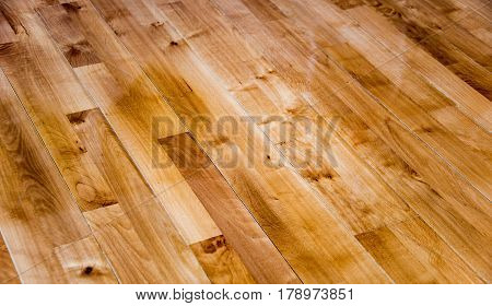 Wood floor. Wood floor made of oak material. Golden color of wood floor. New wood floor installed.