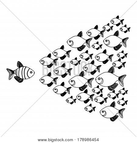 monochrome background with striped fish and shoal of fish vector illustration