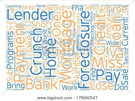 Save Your Home From The Credit Crunch Word Cloud Concept Text Background