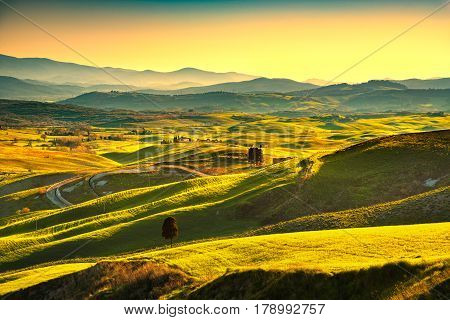 Volterra panorama rolling hills trees and green fields at sunset. Tuscany Italy Europe