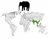 Detailed and colorful illustration of asian elephant range poster