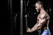 Brutal caucasian handsome fitness men on diet training triceps in gym pumping up body bodybuilding athlete poster