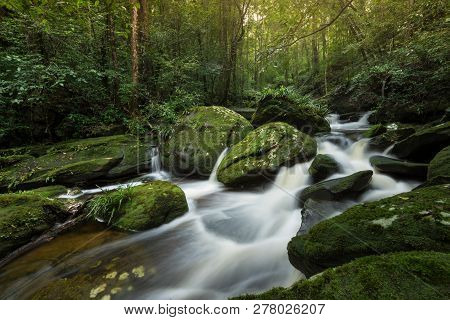 Rock Stream Mountain River Waterfall Green Forest - Landscape Nature Plant Tree Rainforest Jungle Sm