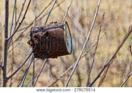 Old Rusty Brown Tin Can Hanging On A Tree Branch In The Forest