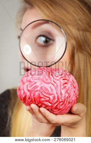 Blonde Woman Holding Magnifying Glass Investigating Something And Looking Closely At Fake Brain.