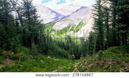 A Female Hiker Backcountry Hiking Through The Remote, Secluded, And Beautiful Rocky Mountains In Kan