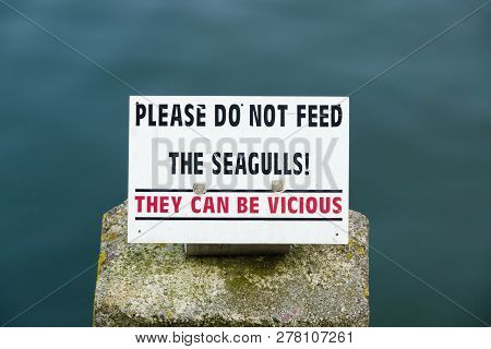 Please do not feed the seagulls sign with the warning that they can be vicious to discourage agressive behaviour and attacks in Mevagissey harbour Cornwall poster