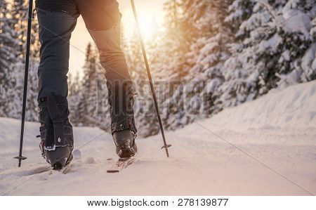 Cross Country Skiing Winter Sport Concept. Ski And Legs Closeup.