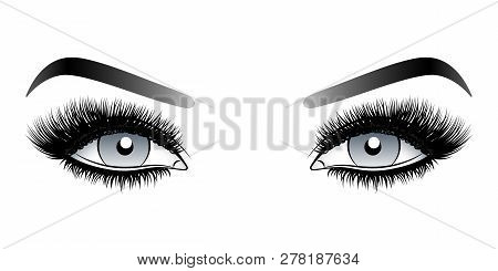 Gray Woman Eyes With Long False Lashes With Eyebrows. Vector Illustration Isolated On White Backgrou
