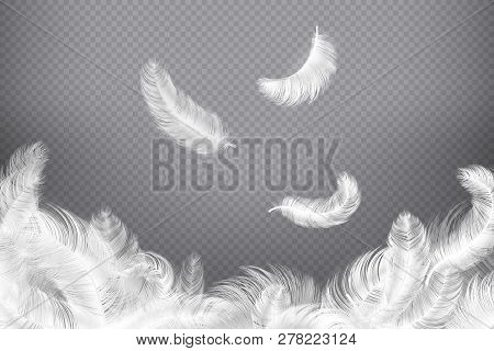White Feather Background. Closeup Bird Or Angel Feathers. Falling Weightless Plumes. Dream Vector Il