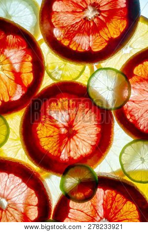 Mixed Colorful Sliced Fruits Orange, Lime, Grapefruit, Lemon. Background Back Lighted